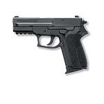 Sig Sauer P2022 9mm